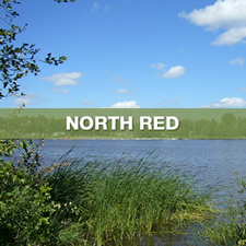 north red region select thumbnail