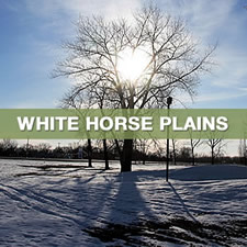 white horse plains region select thumbnail